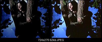 Click image for larger version  Name:Bjork-frame2700-before-after.jpg Views:233 Size:62.3 KB ID:30106