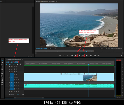 Click image for larger version  Name:Premiere Pro Problem.png Views:211 Size:1.33 MB ID:39741