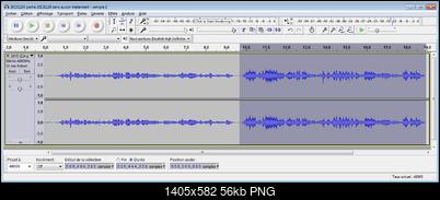 Click image for larger version  Name:20151224 partie 20131224 sans aucun traitement - sample 2.flac - Audacity amplification -5dB.png Views:24 Size:55.6 KB ID:47766