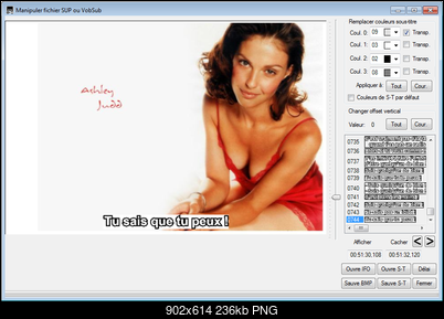Click image for larger version  Name:SubtitleCreator - Manipuler fichier SUP ou VobSub.png Views:8 Size:236.2 KB ID:51785
