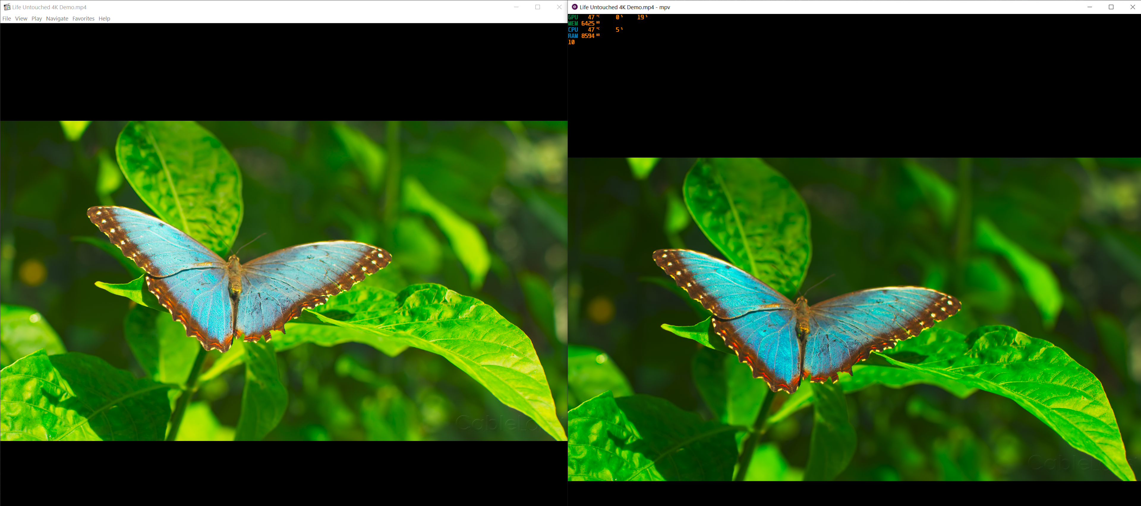 Why image looks so different between MPC-HC/potplayer and
